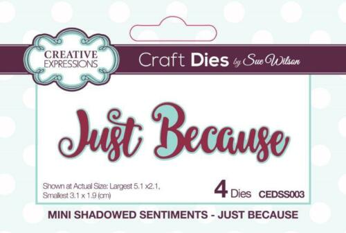 SUE WILSON Craft Dies MINI SHADOWED SENTIMENTS Just Because CEDSS003 4 Dies 5.1