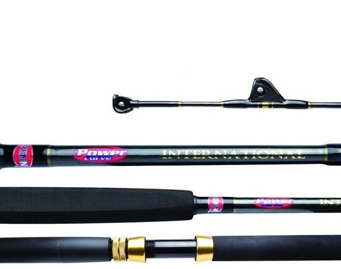 Penn Powercurve INTERNATIONAL 15KG Standup Game Rod 1.73m 1 Piece 5.68 NEW