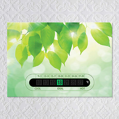 A6 Adult Room Thermometers - Eco Green Leaf