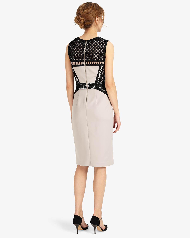 Phase Eight grau Devon Dress Größe UK 14 rrp rrp rrp  LF171 DD 09 | Schön und charmant  | Online Shop  | Glücklicher Startpunkt  5e3fd6