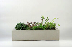 Concrete-Tray-Concrete-Planter-12-034-Flower-Pot-Handmade-Home-amp-Garden-Decor-Gray