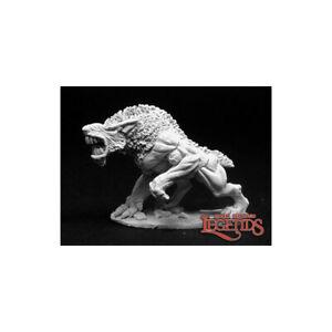 02817-Paramo-Hound