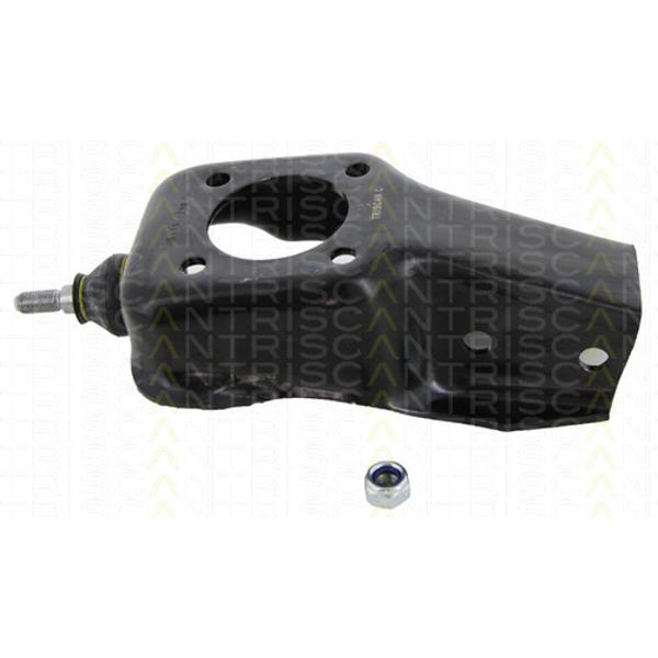 Lagerbock Achskörper FIAT - Triscan 8500 15560