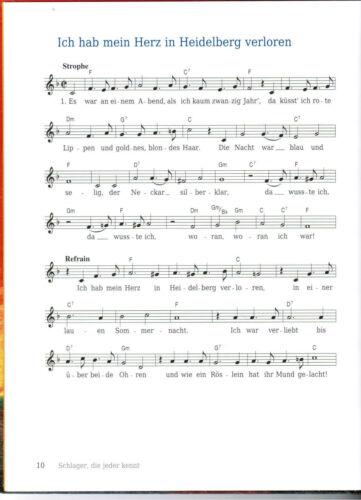 GROßDRUCK  Schlager Volkslieder Liederbuch Noten Spiel mir eine alte Melodie