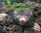 Collins Big Cat: What's Underground? Workbook by HarperCollins Publishers (Paperback, 2012)