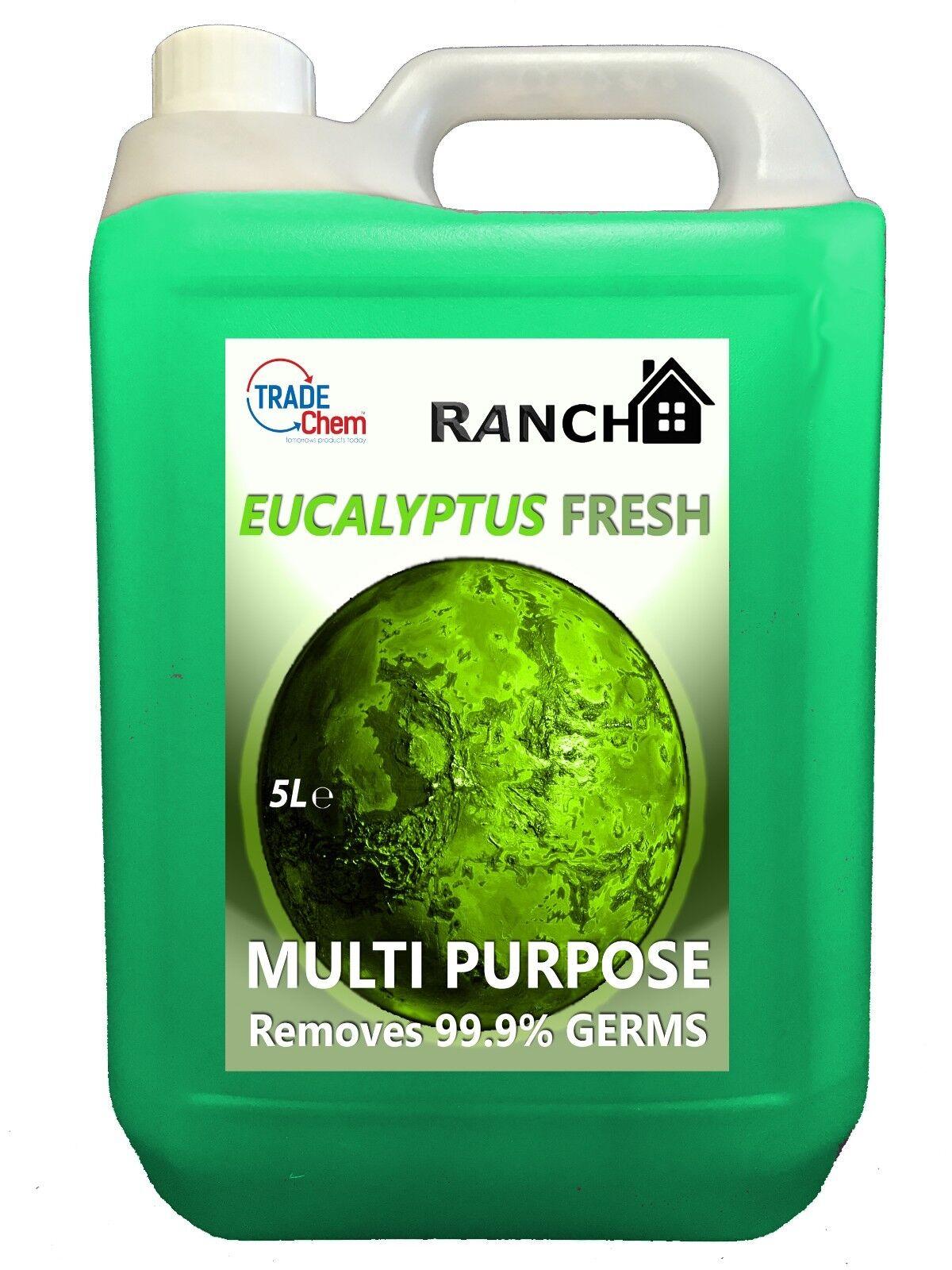 Eucalipto Eucalipto Eucalipto fresco multi propósito limpiador 5L-elimina 99.99% bacterias-Cocina acf3f1