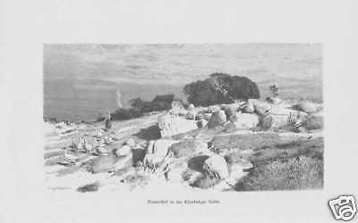 Herrlich Bauernhof In Der Lüneburger Heide Holzstich Von 1880