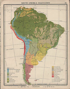 1939 map south america vegetation selvas amazon forest fresh water image is loading 1939 map south america vegetation selvas amazon forest gumiabroncs Images