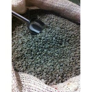 1 KG Raw Brazil Santos Arabica Green Coffee Beans for home roaster