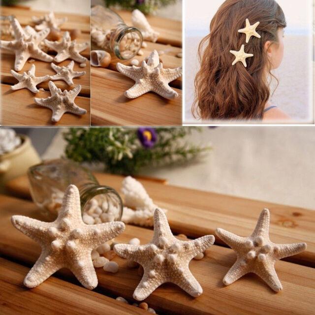 Fashion Lady Beach Natural Starfish Sea Star Hair Clip Hair Clip Hairpin 2pcs