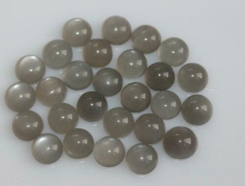 Details about  /Lot Of 3x3mm To 10x10mm Round Cabochon Natural Grey Moonstone Loose Gemstones