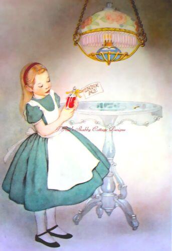 ALice In Wonderland Green Dress Vintage Illustration Drink Me 5x7 Fabric Block