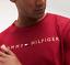 TOMMY-HILFIER-Camiseta-para-hombre-manga-corta-roja-ruibarbo-M-L-XL miniatura 2