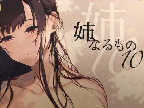 C97 the elder sister 10 dojin manga book pochi art ane naru mono comiket anime