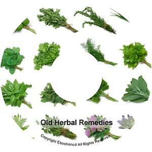 Details about Old Herbal Remedies Cures - Cultivation of Herbs Medicinal  Plants Books on CD