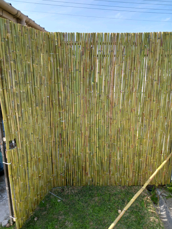 BAMBOO AND WOOD FENCING