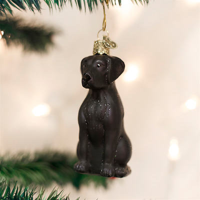 Old World Christmas Golden Lab Ornament!