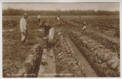 Het Graven Van Plantgeuten a7 Digging Of The Plant Channels Friendly Java Postcard