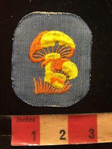 Vtg-Orange-amp-Yellow-Mushrooms-On-Denim-Jacket-Patch-87N7