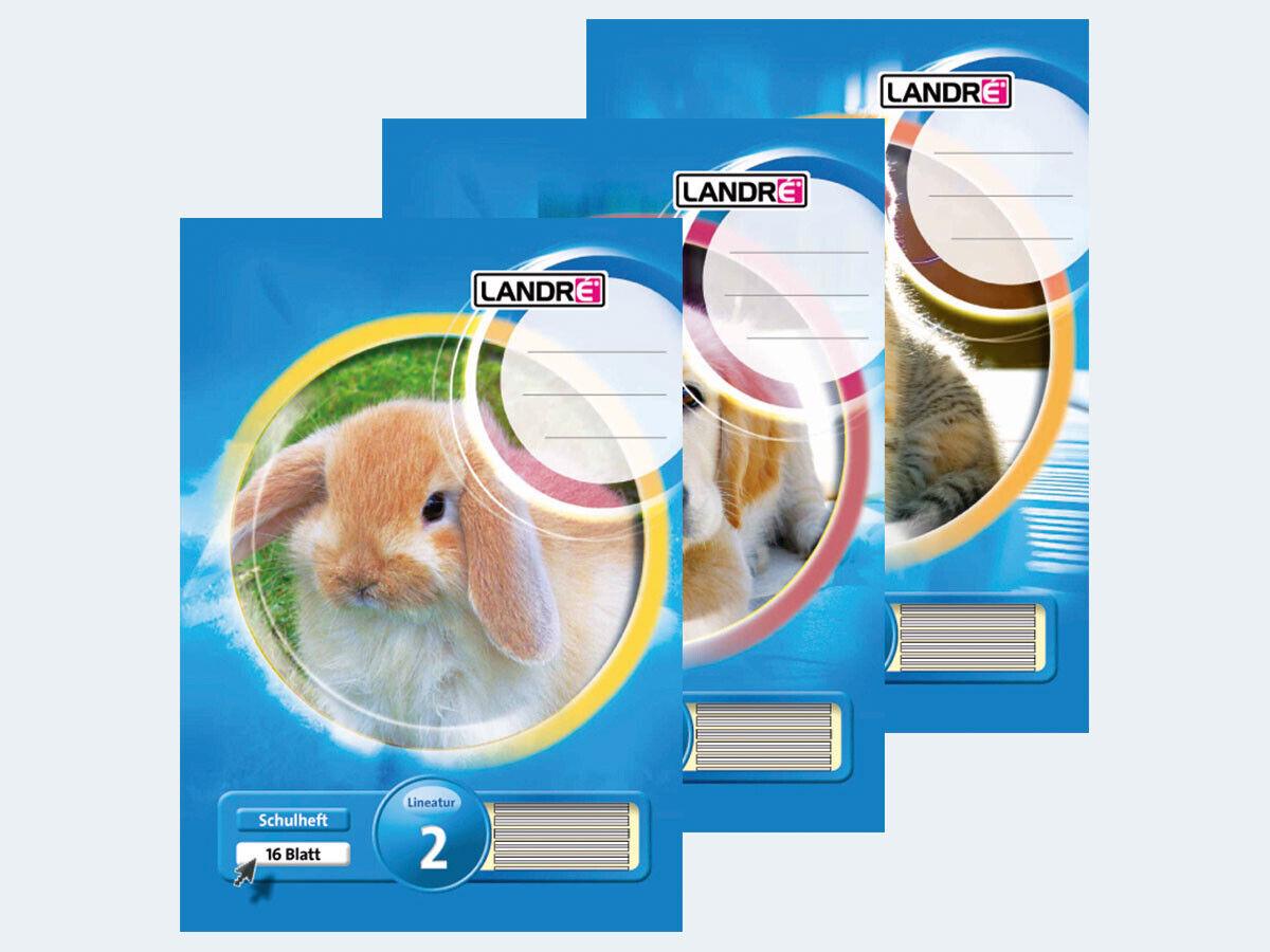 LANDRE 100050070 Schulheft 10er Pack A5 16 Blatt Lineatur 4 liniert 3 Motive sortiert