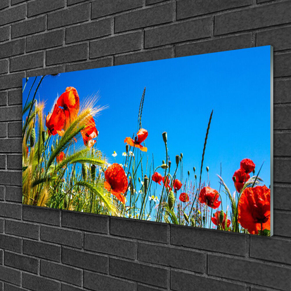 Glass print Wall art art art 100x50 Image Picture Flowers Floral f8c8bb
