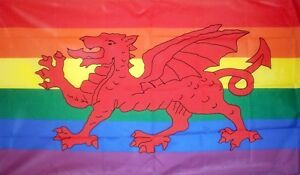 Rainbow Gay Pride Wales Welsh Dragon 5'x3' Flag Coleccionismo