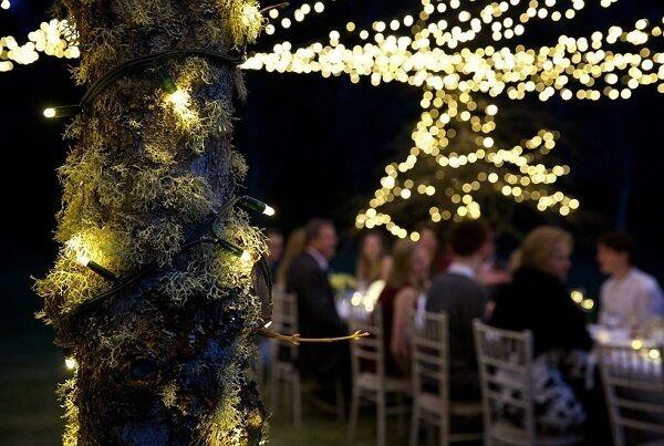 Profesional IP44 Cadena De Luces Bombillas Led de exterior Navidad Boda Fiesta Jardín