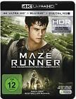 Maze Runner (Ultra HD Blu-ray) (2016)