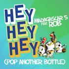 Hey Hey Hey (Pop Another Bottle) von Madagascar 5 Feat. Rob (2012)