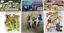 HGL animaux sauvages du monde chiffres enfants jouets dinosaures//Sealife//Safari