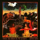 There Are Birds In My Garden by David Gibb (CD, Jul-2011, Hairst Blinks)