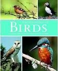 Birds by Parragon (Hardback, 2011)