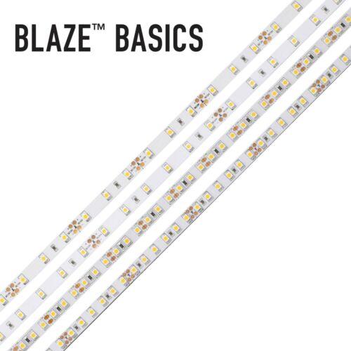 DiodeLED Blaze Basic Low Voltage 12V or 24V Dimmable 16.4FT LED Tape Light