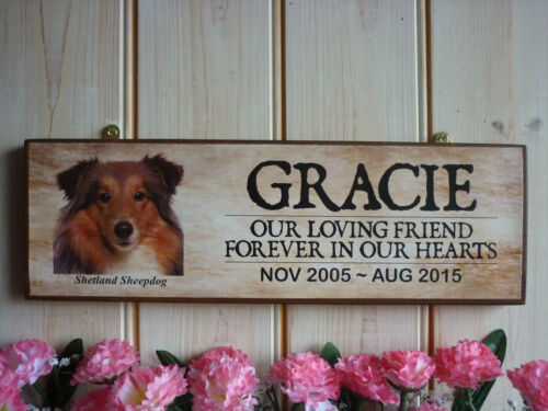 PERSONALISED SHETLAND SHEEPDOG GIFT OWN NAME SIGN GARDEN SIGN HOUSE PLAQUE PET