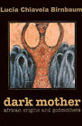 Dark Mother: African Origins and Godmothers by Lucia C Birnbaum (Paperback / softback, 2001)