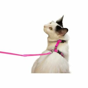 Pink-Cat-Harness-and-Leash-Dog-Leash-with-Adjustable-Nylon-Strap-Collar-4-5-inch