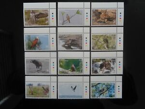 AITUTAKI COOK ISLANDS 2018 BIRDS OF PREY SET 12v TO $10 COMPLETE MNH MINT