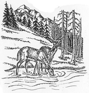 Image Is Loading Unmounted Rubber Stamps Wildlife Mountain Stream Scene Scenic