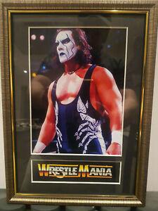 Sting-Mounted-amp-Framed-Retro-Memorabilia-Retro-Wrestling-Wrestler