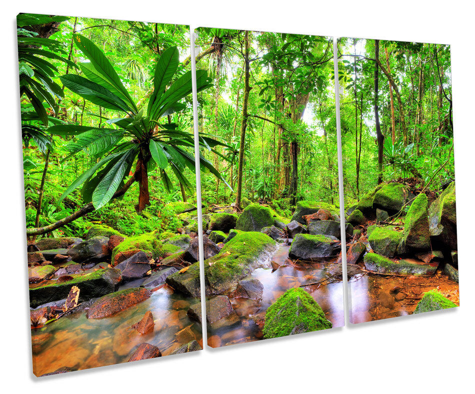 Jungle Tropical Landscape TREBLE CANVAS WALL ART Box Framed Print