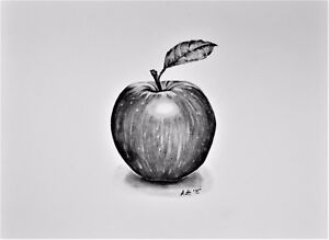 Details about Apple,Still life,study ,ORIGINAL Graphite pencil  drawing,Realism
