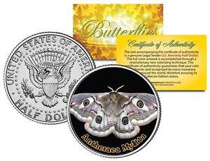 ANTHERAEA-MYLITTA-BUTTERFLY-JFK-Kennedy-Half-Dollar-U-S-Colorized-Coin