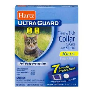 Hartz-Ultra-Guard-Flea-amp-Tick-Collar-for-Cats-amp-Kittens-7-Month-Protection