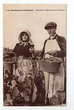CHAMPAGNE CPA 51 Vins Vignes et thémes vendanges vigneron et vigneronne