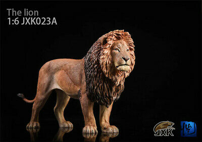 1:6 Scale Animal lion head carving For Action figure 12/'/' collection New