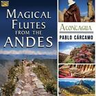 Magical Flutes From The Andes-Aconcagua von Pablo Carcamo (2016)