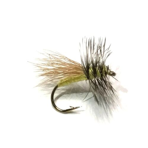 6 x Henry Fork Yellow Sally Stonefly Dry Fly Fishing Flies For Trout Salmon