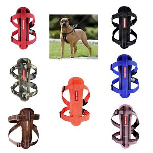 EZY-DOG-HIGH-HARNESS-QUALITY-WITH-CHESTPLATE-amp-FREE-SEATBELT-ATTACHMENT