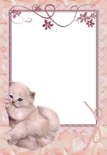 Katzen-Baby 100g//qm NEU 20 Blatt Briefpapier Motivpapier mit Katzen-Motiv