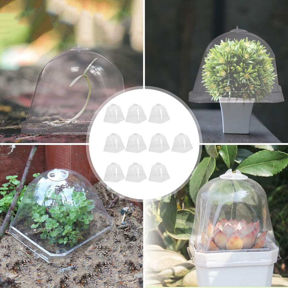 Garden Freeze Protection Cloche Plant Cover Seedling Dome Humidity Nursery Cover
